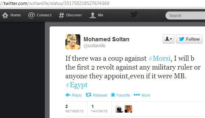 Mohammed Sultan Egypt revolt against Morsi
